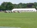 Marquee at polo match